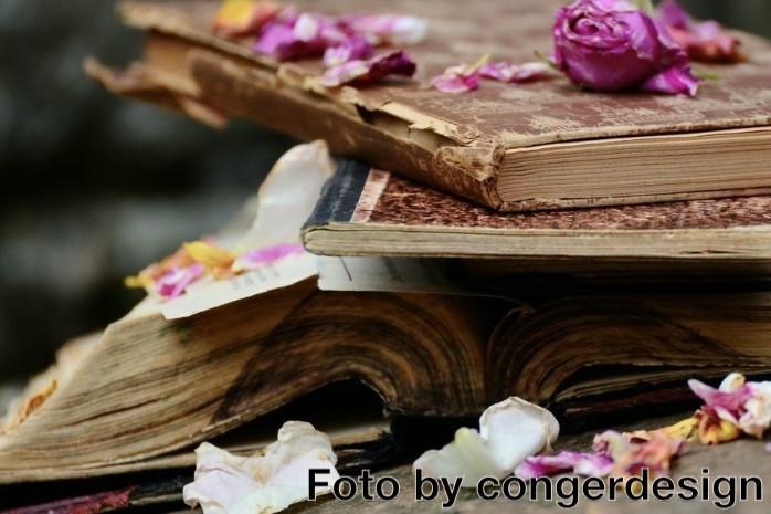 Il femminicidio nelle opere letterarie