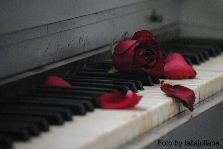 Il pianista della piazza