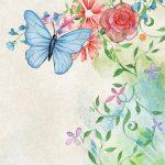 """""""Su ali di farfalla"""": lo schema del romanzo"""